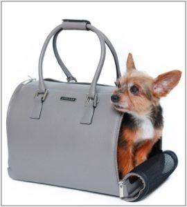 dog_bag_pic