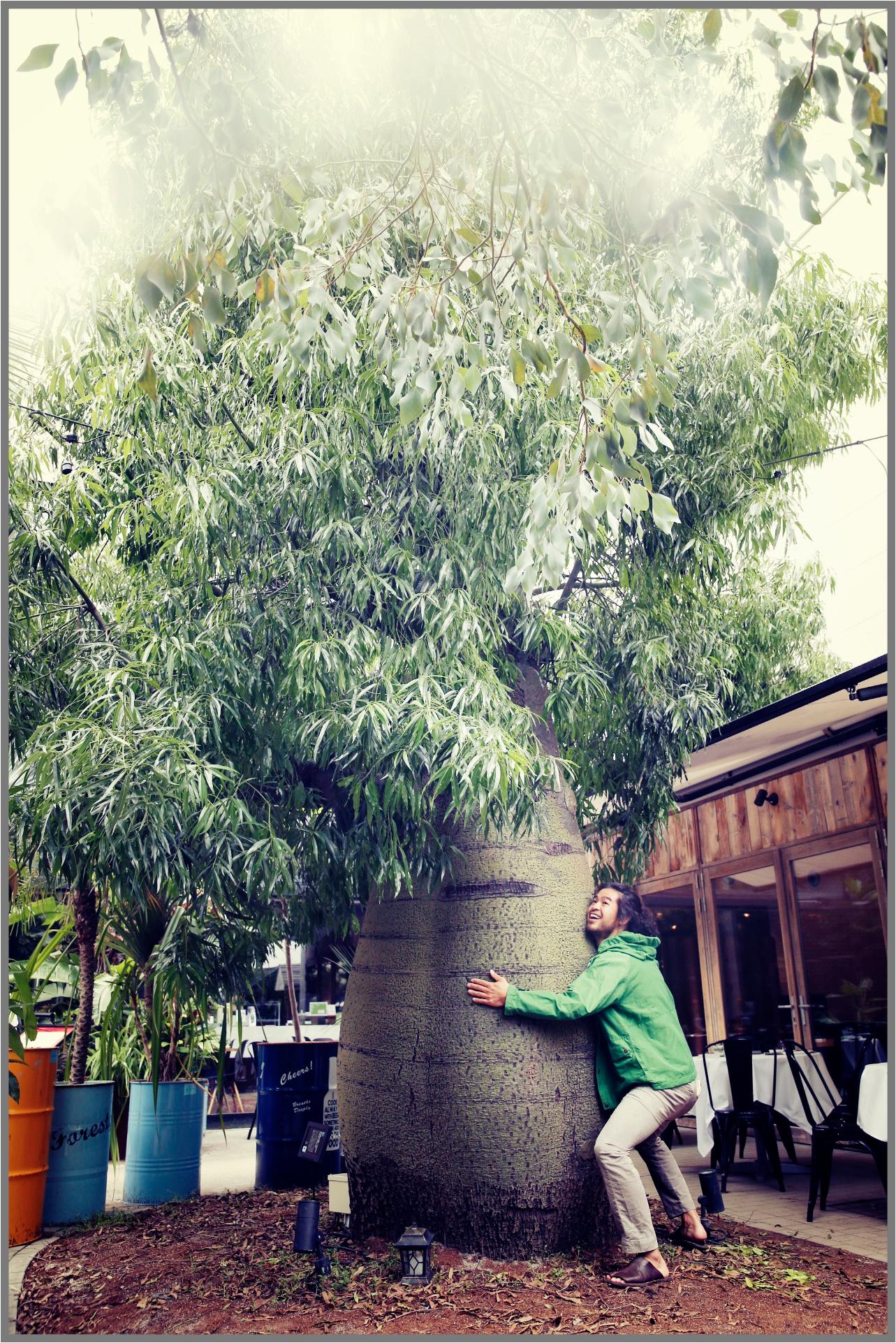 Nishihata_plant6_pic