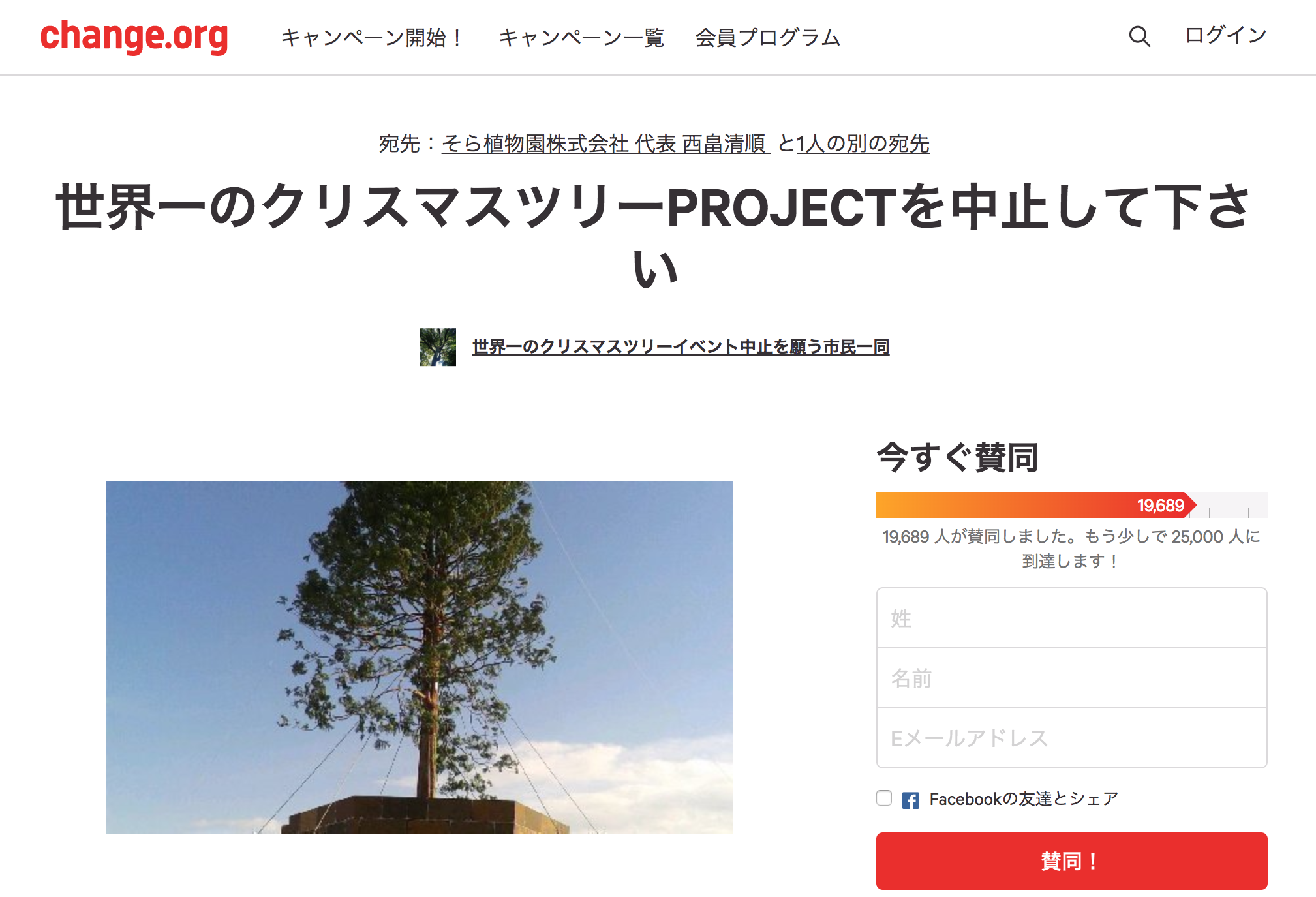 Tree_project_suspension_pic