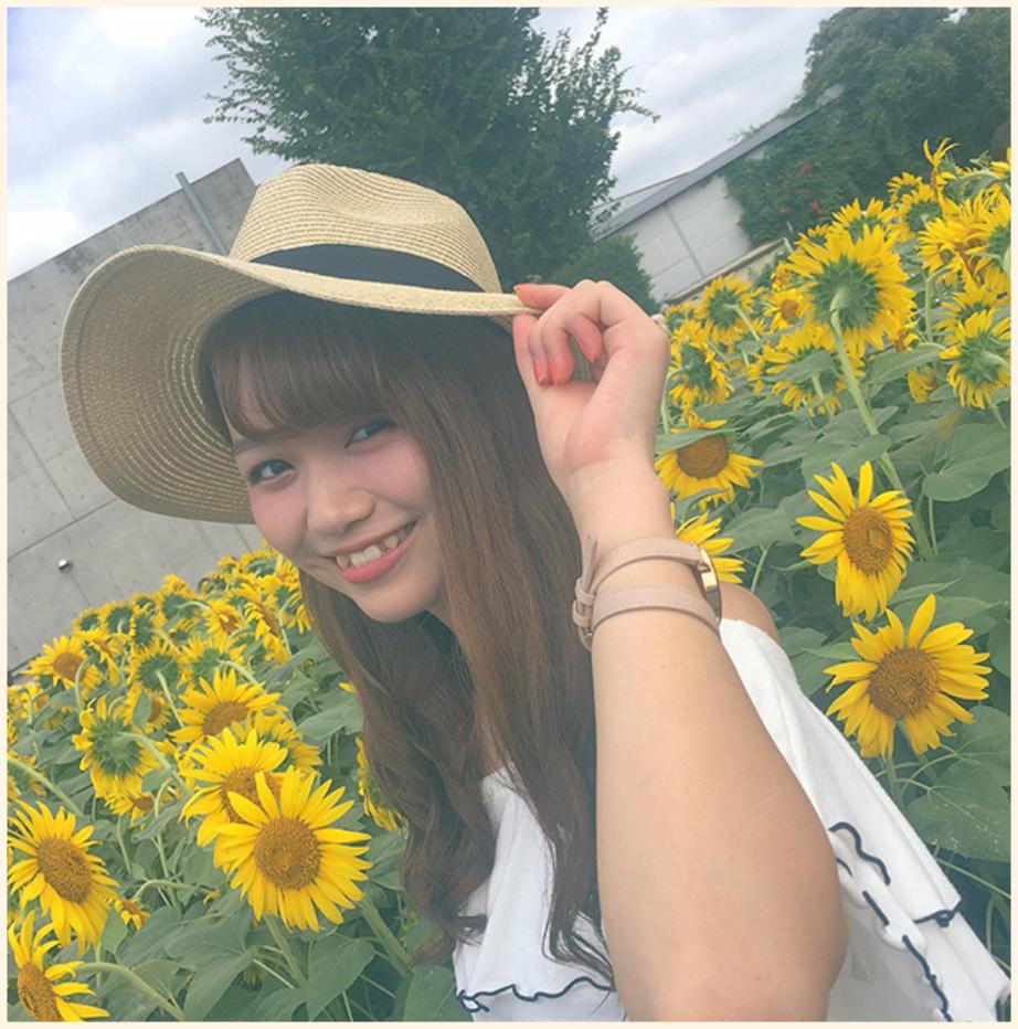 Miseki01_pic